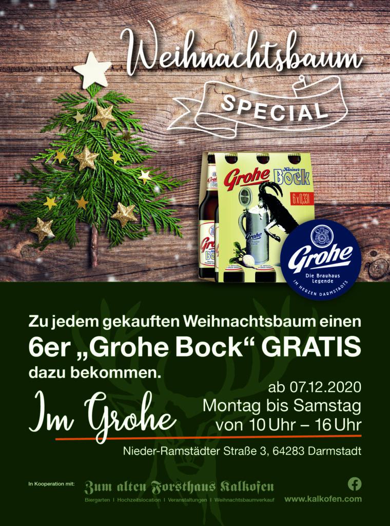 Weihnachtsbaum-Special Grohe